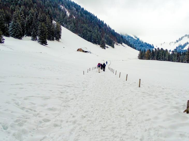 Les Paccots - Switzerland hiking