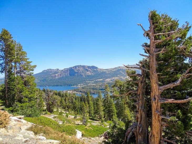 Mormon-Carson Pass Emigrant Trail Marker Point
