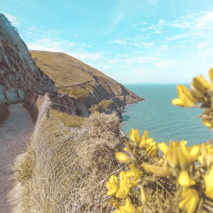 Cliff walk Bray - Greystones