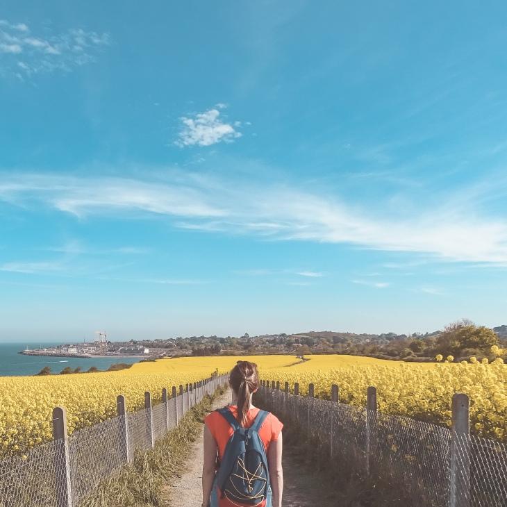 Cliff walk - Greystone seaside